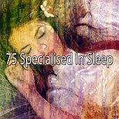 75 Specialised in Sle - EP by Deep Sleep Music Academy