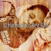 30 Harmonious Rest Rain by Rain Sounds and White Noise