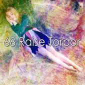 68 Raise Torpor by Baby Sleep