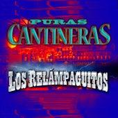 Puras Cantineras by Los relampaguitos