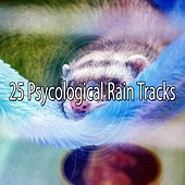25 Psycological Rain Tracks by Rain Sounds and White Noise