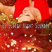 65 Sleepy Night Slumber by Deep Sleep Relaxation