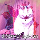 61 Rivers of Liquid Zen von Rockabye Lullaby