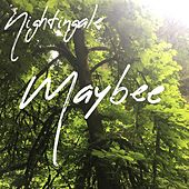 Maybee by Nightingale