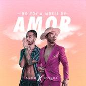 No Voy a Morir de Amor (Remix) de Samo