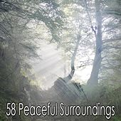 58 Peaceful Surroundings by White Noise Research (1)
