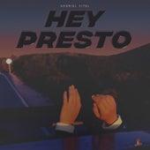 Hey Presto by Gabriel Vitel