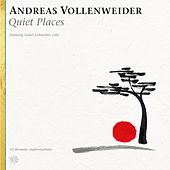 Quiet Places by Andreas Vollenweider