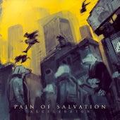 ACCELERATOR de Pain Of Salvation