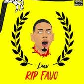 RIP Favo di Lyan