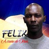 A cause de Jésus von Felix (Rock)