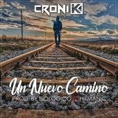 Un Nuevo Camino by Croni-K