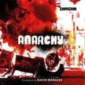 Anarchy von David Morales