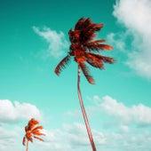 Beach Murda by Baby Dooley