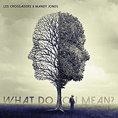 What Do You Mean? by Les Crossaders