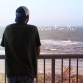 Wait for You by Heath Clark