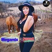 Megamix Rancheras de las Wenas de Varios Artistas