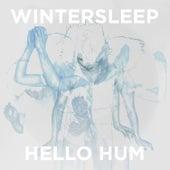 Hello Hum von Wintersleep