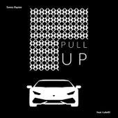Pull Up de Sonny Raptor