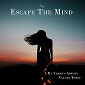 Escape the Mind, Vol. 3 by Various Artists