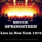 Live in New York 1973 (Live) von Bruce Springsteen