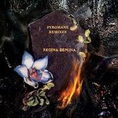 Pyromane Remixes de Régina Demina