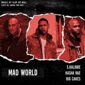 Mad World (feat. Big Cakes, Kasha Rae & Jabba Tha Kut) de Sabotawj