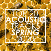 Top 20 Acoustic Tracks Spring 2020 (Instrumental) di Guitar Tribute Players