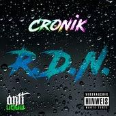 R.D.N (Regen des Nordens) by Croni-K