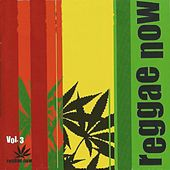 Reggae Now Vol. 3 by Various Artists