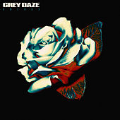 Amends de Grey Daze
