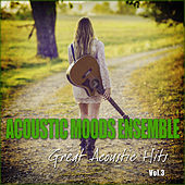 Great Acoustic Hits Vol. 3 by Acoustic Moods Ensemble