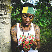 Reggae Gold 2020 by Bangtime Le Rock