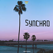 Synchro by Various Artists