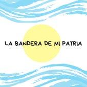 La Bandera de Mi Patria de Mano