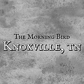 Knoxville, TN by Morningbird