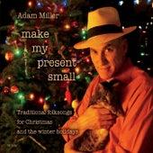 Make My Present Small de Adam Miller