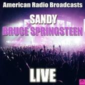 Sandy (Live) von Bruce Springsteen