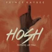 Hosh de Prince Kaybee