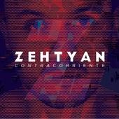 Contracorriente de Zehtyan