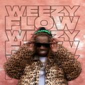 Weezy Flow de Lil Wayne