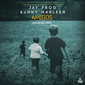 Amigos (BlackBonez Club Mix) by Jay Frog