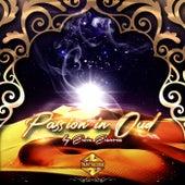 Passion In Oud de Ersin Ersavas