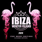 Ibiza Winter Island 2020 (The House Edition) von Various Artists
