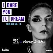 I Dare You to Dream (Remixes, Vol. 2) de Big Kid