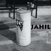 Jahil de Hudi