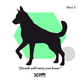 Friends Will Carry You Home Part 3 by Various Artists