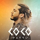 Coco by Pavel