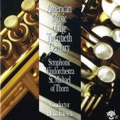 American Music of the Twentieth Century by Heinz Friesen
