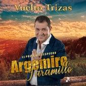 Vuelto Trizas von Argemiro Jaramillo